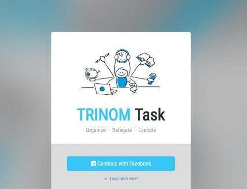TRINOM Task – Release 1.1 GUI – Vorstellung